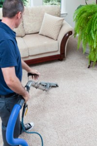 carpet_cleaning_perf_pro